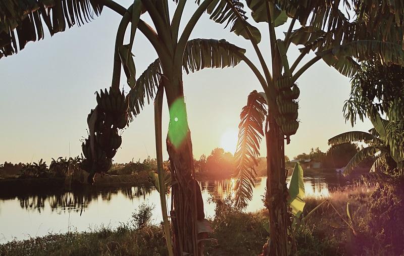 タイの田舎の風景