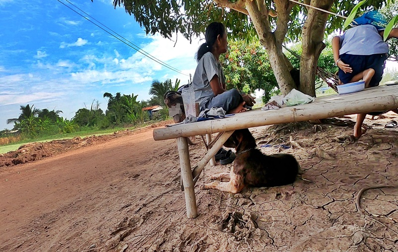 タイ田舎の風景
